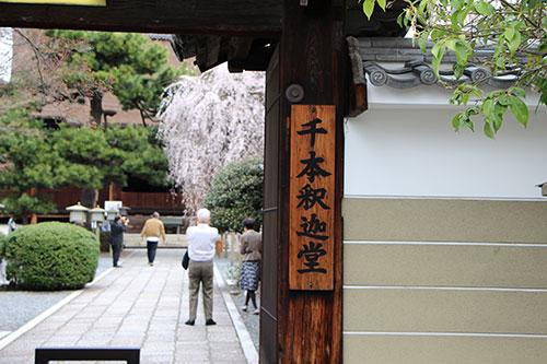 千本釈迦堂IMG_0066.jpg