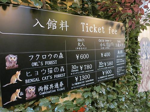 京都ひょう猫の森 フクロウの森